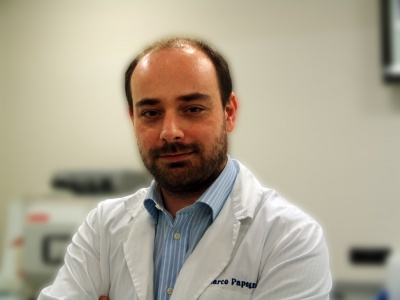 Dr. Marco Papagni